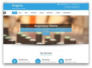 Versiones nuevos temas WordPress